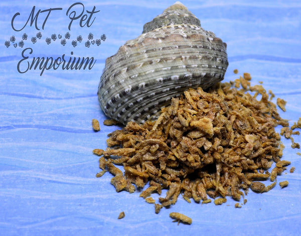 Plankton - Hermit Crab Food