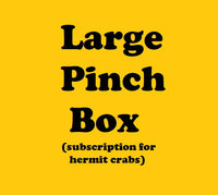 LARGE Pinch Box - Monthly Hermit Crab Food Box
