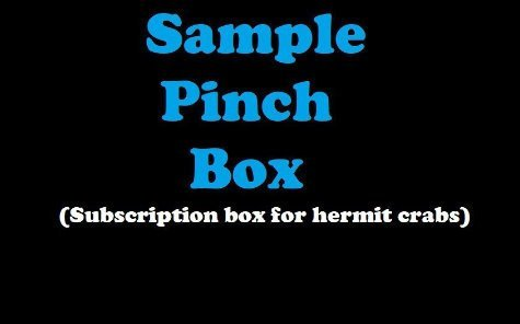 Sample Pinch Box - Monthly Hermit Crab Food Box