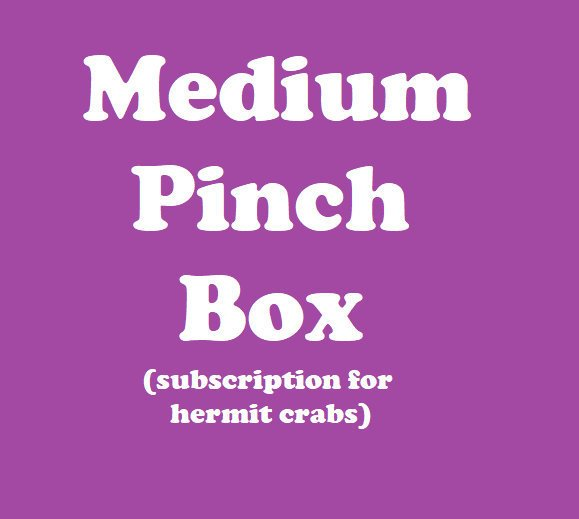 MEDIUM Pinch Box - Monthly Hermit Crab Food Box