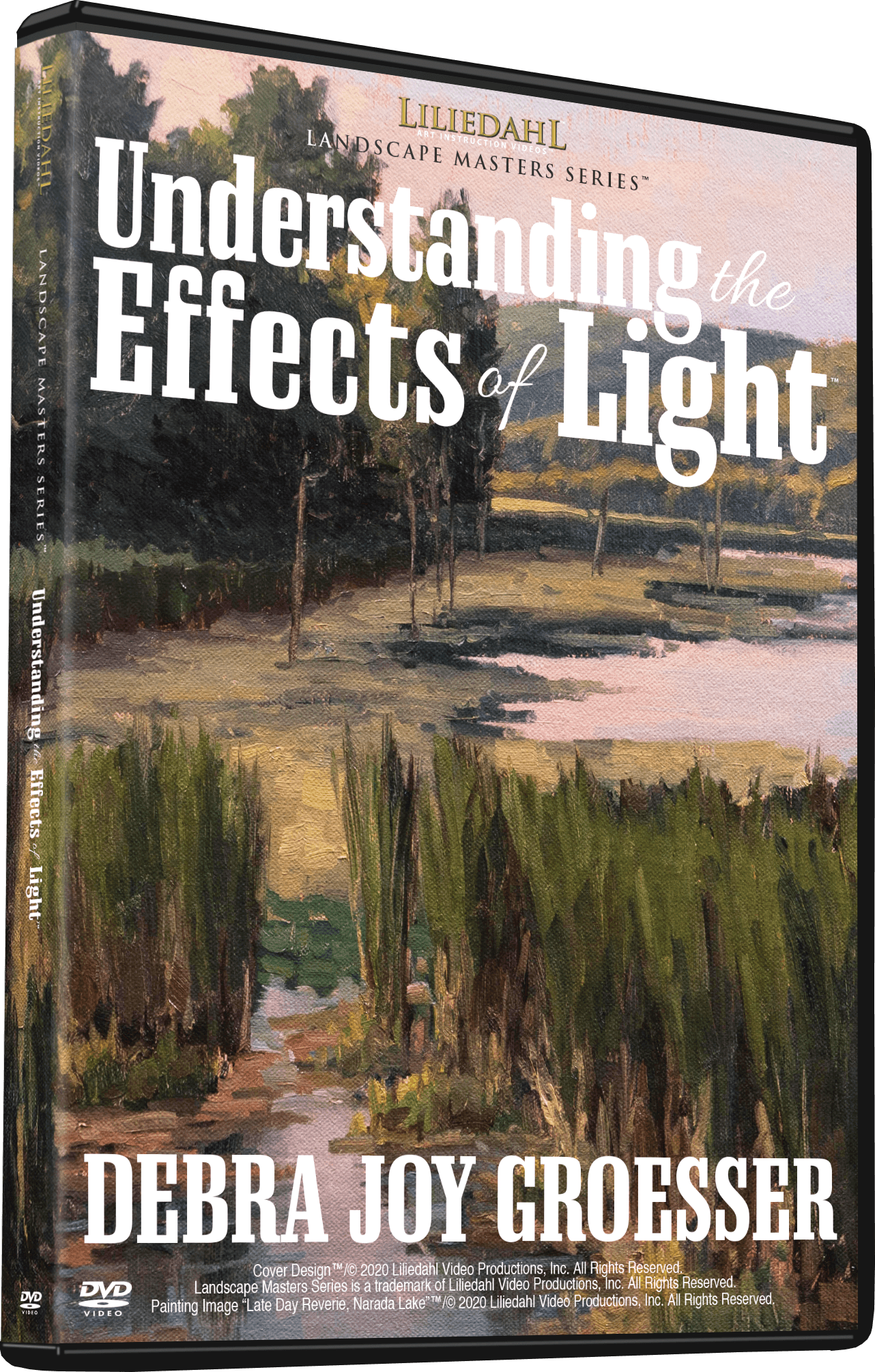 Debra Joy Groesser: Understanding the Effects of Light