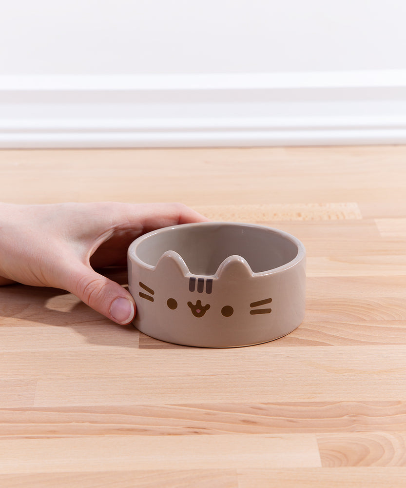 Pusheen Character Pet Food Bowl