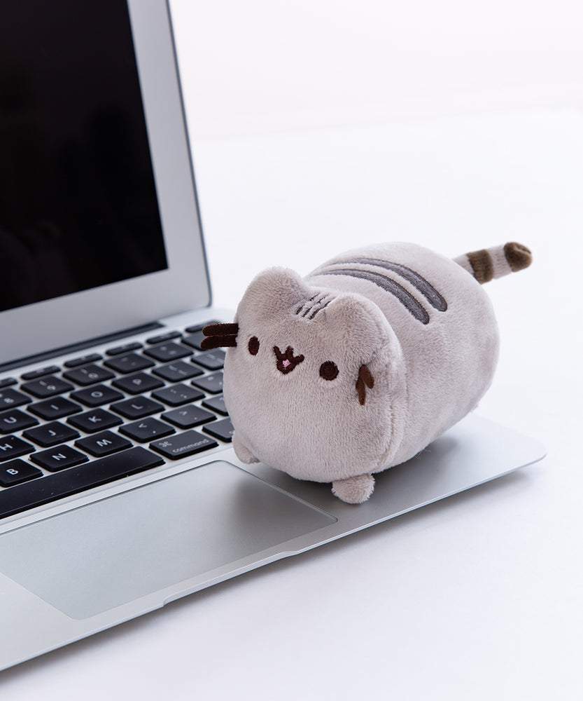 Pusheen Screen Cleaner