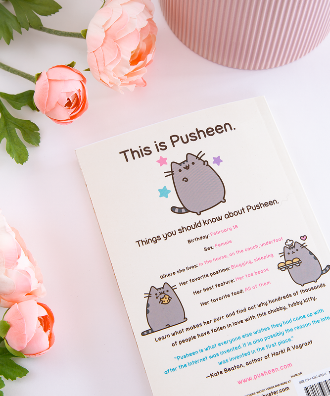I Am Pusheen the Cat (Paperback)