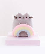 Pusheen with Rainbow Plush