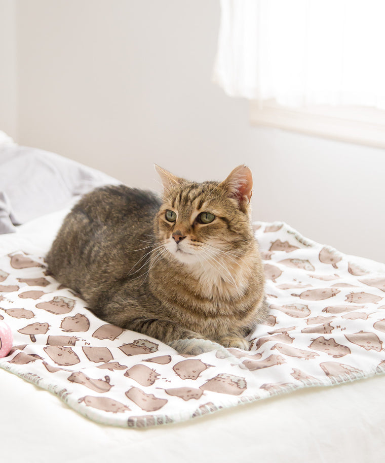 Pusheen Pet Blanket