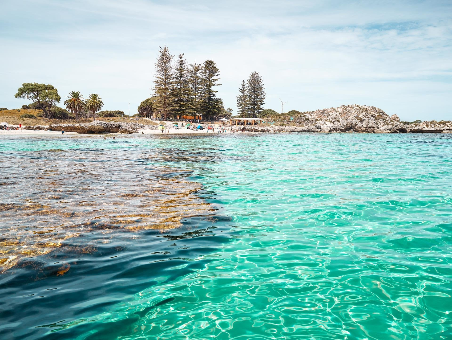 Rottnest Island, Fremantle, Perth  Western Australia.  Reef, Indian Ocean, Pine trees water ocean
