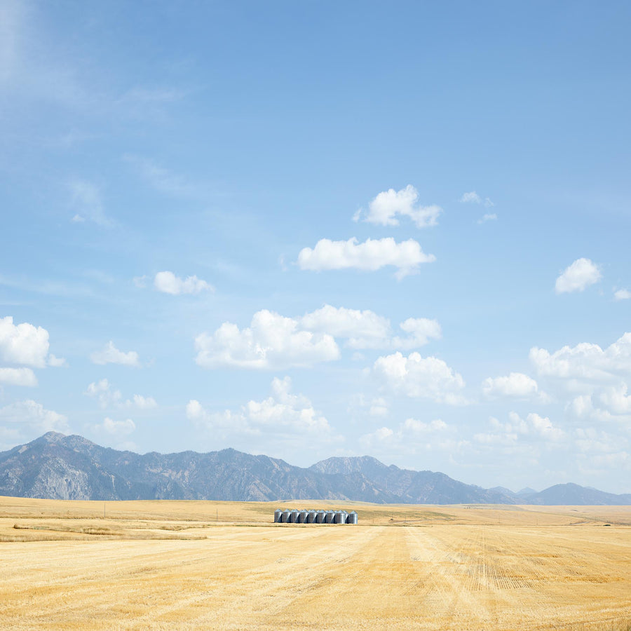 Crop Field, Idaho, USA, LTD | Christian Fletcher Photo Images | Landscape Photography Australia