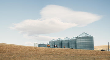 Wheat Silo's, The Palouse, Washington, USA, LTD | Christian Fletcher Photo Images | Landscape Photography Australia
