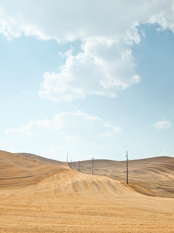 The Palouse, Washington, USA LTD | Christian Fletcher Photo Images | Landscape Photography Australia