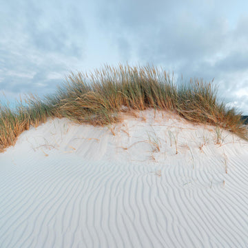 Sand Dunes, Bremer Bay,  Western Australia | Christian Fletcher Photo Images | Landscape Photography Australia