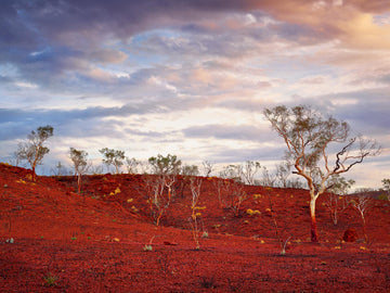 Karijini National Park, Pilbara, North Western Australia - Christian Fletcher Gallery