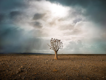 Namibia, Africa, LTD | Christian Fletcher Photo Images | Landscape Photography Australia