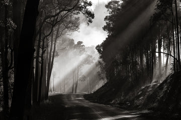 Balingup - Nannup Road, South Western Australia | Christian Fletcher Photo Images | Landscape Photography Australia
