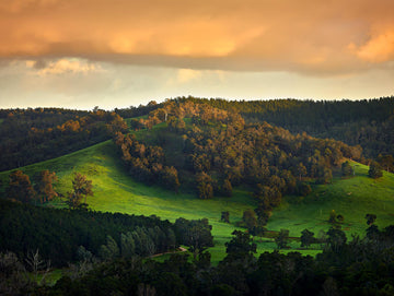 Nannup, South Western Australia | Christian Fletcher Photo Images | Landscape Photography Australia