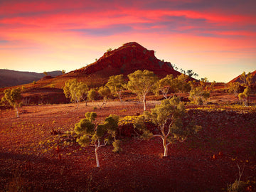 Karlamilyi National Park, North Western Australia - Christian Fletcher Gallery