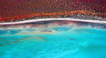 Shark Bay Aerial, North Western Australia