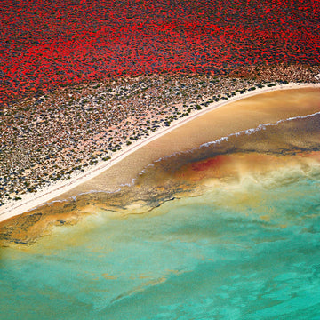 Shark Bay, North Western Australia | Christian Fletcher Photo Images | Landscape Photography Australia