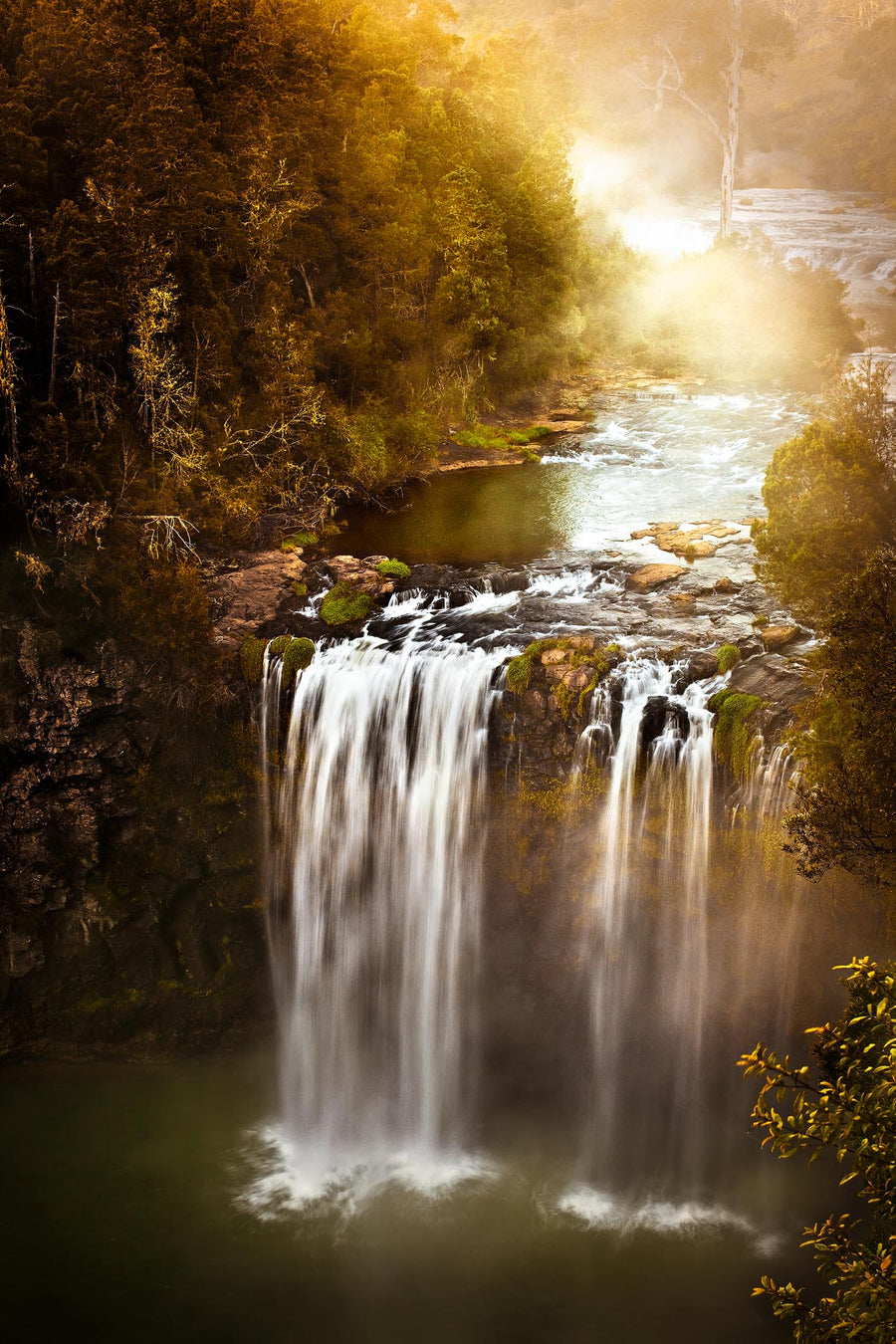 Dangar Falls, Dorrigo, NSW | Christian Fletcher Photo Images | Landscape Photography Australia