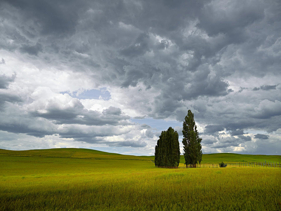 Farmland, Tasmania | Christian Fletcher Photo Images | Landscape Photography Australia