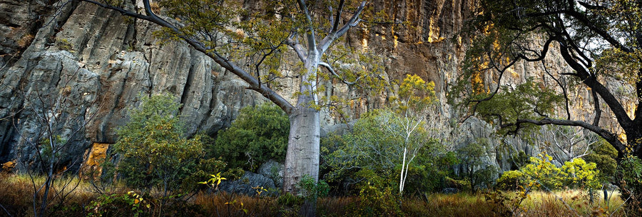 Windjana Gorge, Kimberley, North Western Australia | Christian Fletcher Photo Images | Landscape Photography Australia