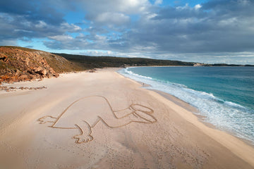 Head in the Sand, Wyadup | Christian Fletcher Photo Images | Landscape Photography Australia