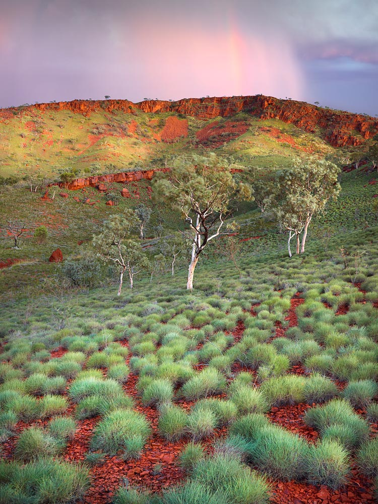 Karijini National Park, Pilbara, North Western Australia, LTD | Christian Fletcher Photo Images | Landscape Photography Australia