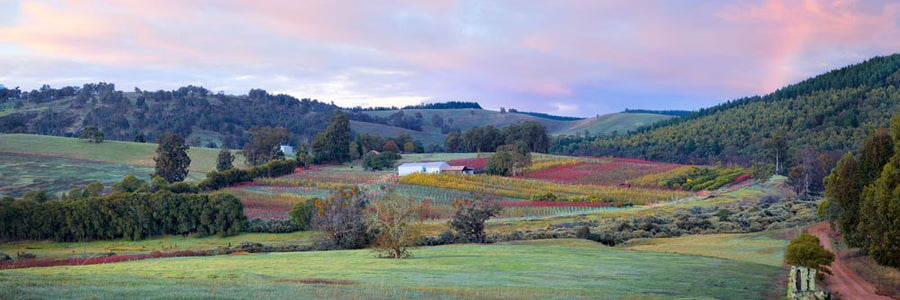 Farmland, Nannup, South Western Australia | Christian Fletcher Photo Images | Landscape Photography Australia