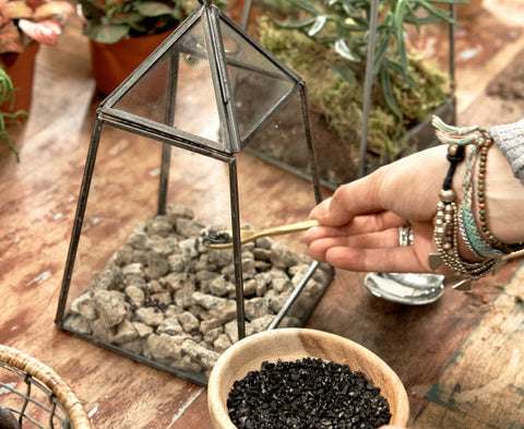 Terrariums And Planters