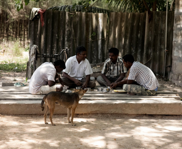 Indian men having lunch