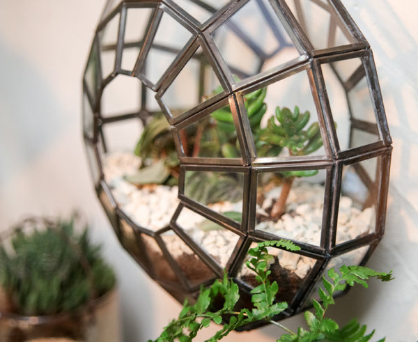 Zinc Terrarium with succulents