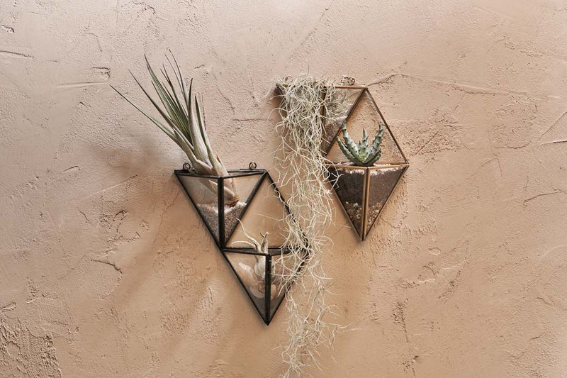 Nkuku VASES & PLANTERS Karana Wall Hung Planter Display - Small