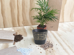 Wamba Plant Kit (Petit Only)