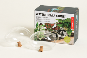 Water From A Stone (Set of 2)