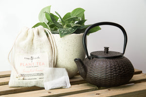 Plant Tea Fertilizer - Houseplant Heaven