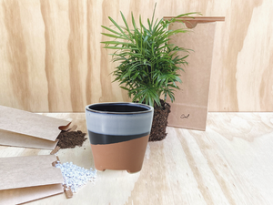 Aztèque Plant Kit