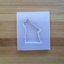 Load image into Gallery viewer, Husky Dog Plastic Mold - 3 designs to choose from