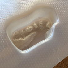 Load image into Gallery viewer, 3.7 oz T-Rex Head Plastic Mold