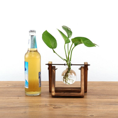 Wooden Glass Hydroponic Flower Vase-CloudyComfort-1 Holder-CloudyComfort