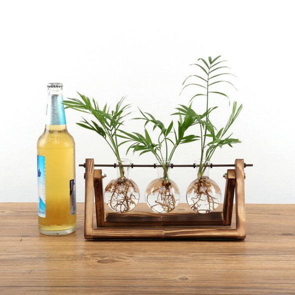 Wooden Glass Hydroponic Flower Vase-CloudyComfort-3 Holder-CloudyComfort