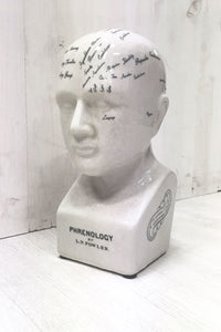 Phrenology Head - little-lies-uk