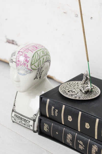 Mini Phrenology Head