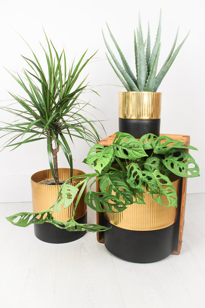 Gold Metal Planters