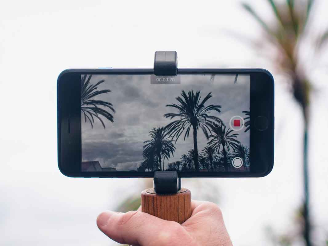the glif with the hangle and phone attached in a tropical setting