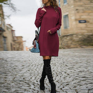 Turtle Neck Plain Long Sleeve Brief Casual Dress
