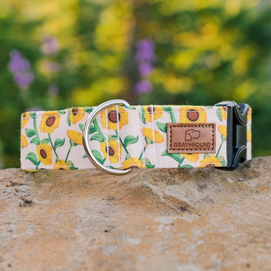 Sunflower Fields Collar