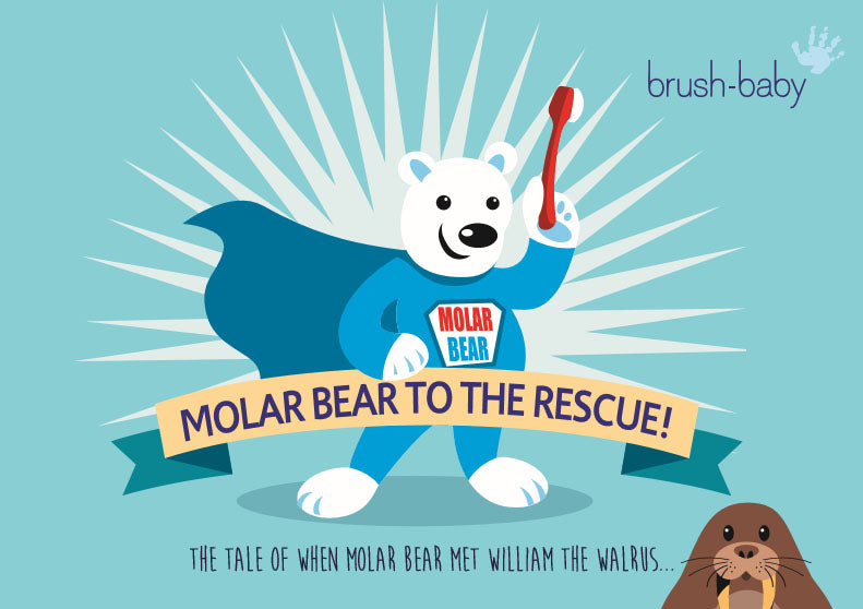 molar bear childrens toothbrushing toothbrushes