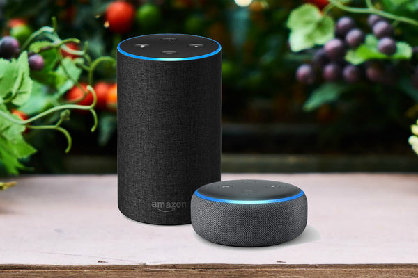 6 Best Tech Gifts To Pick Up While Holiday Shopping - Amazon Echo - KEUTEK