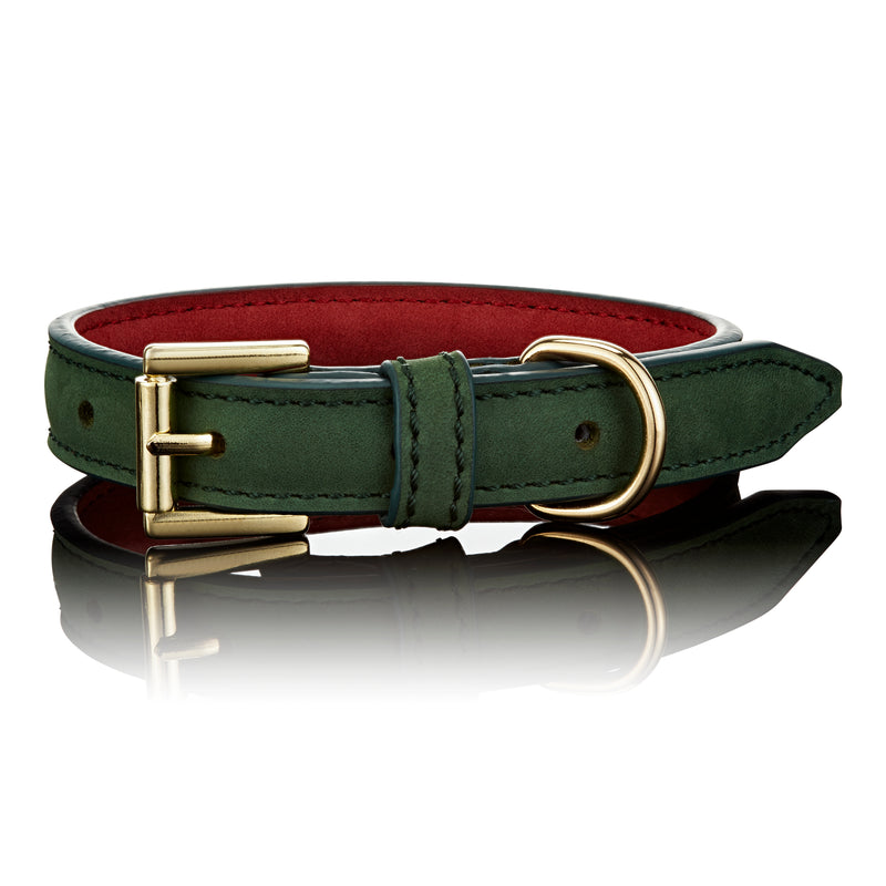 Luxe Leather Collar In Green
