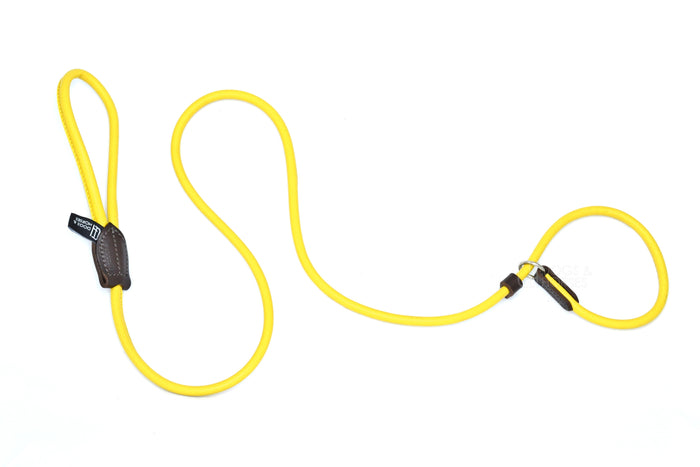 Dogs & Horses classic rolled leather dog slip lead, in traditional or vibrant contemporary colours, handmade in England. In Yellow with silver from Keeper & Co.